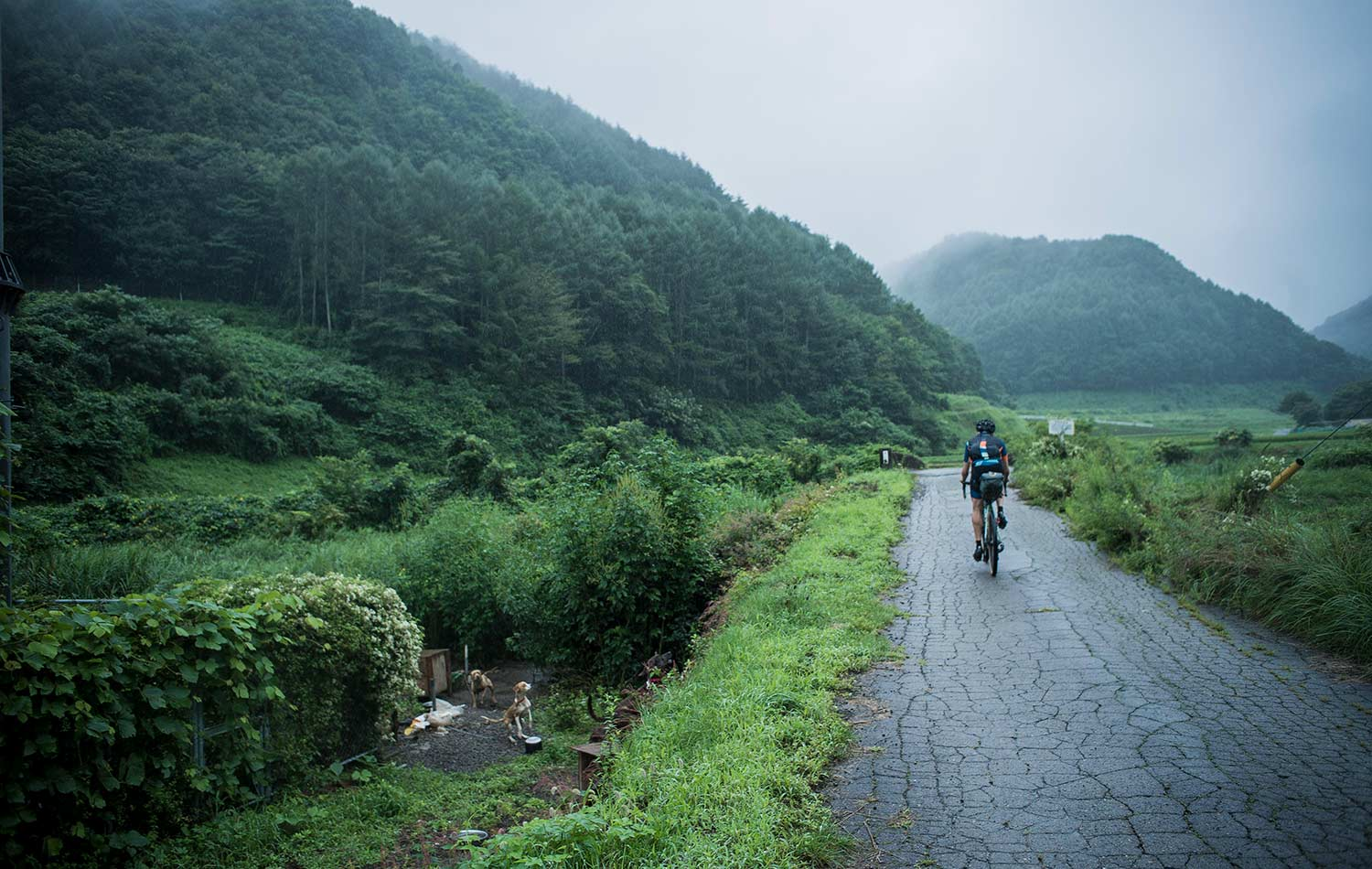 bike ride in japan on japanese odyssey