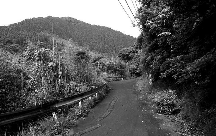 Japanese Odyssey Rindo. Detour Competition | Apidura