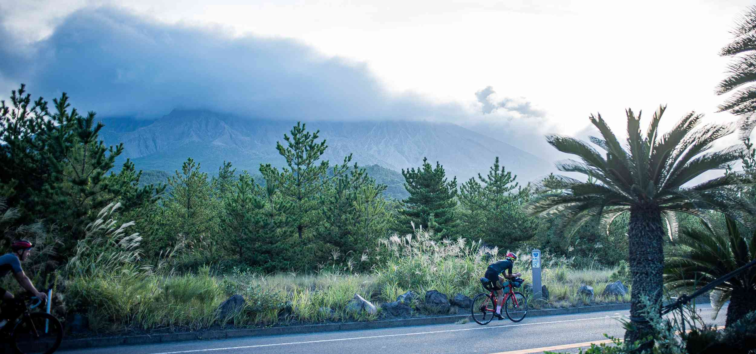 Two cyclists ride past trees and a looming sky