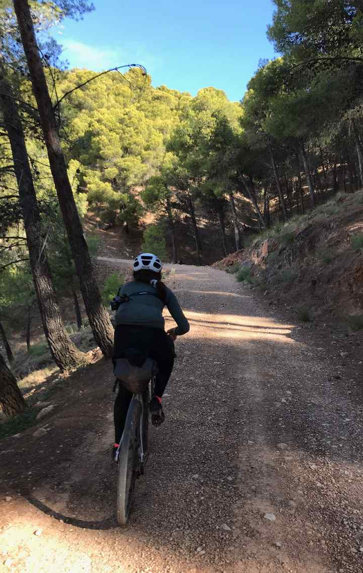 A person cycling through a gravel path in a forest
