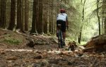 MArkus rides Maam Road, amongst trees with bikepacking bags on his bike