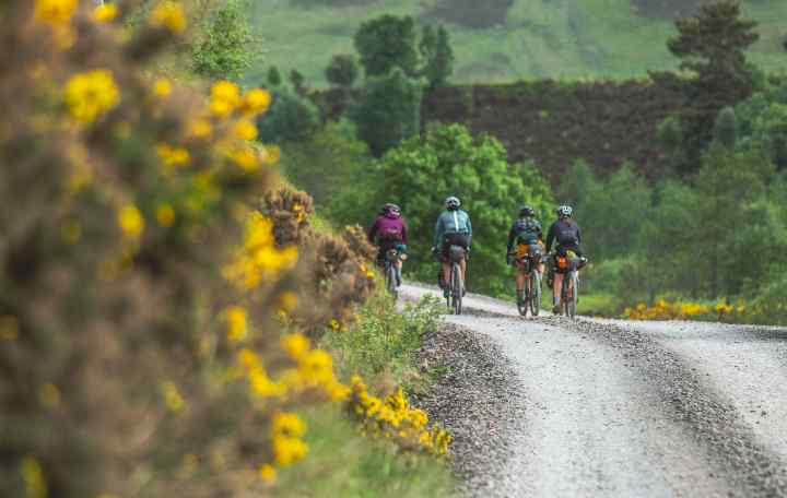 The Steezy Collective ride past flowers on a gravel road