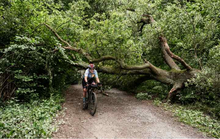 Maren rides along a smooth gravel path in front of a tree fallen across the path